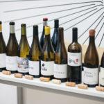 exp-vinos-catados-1