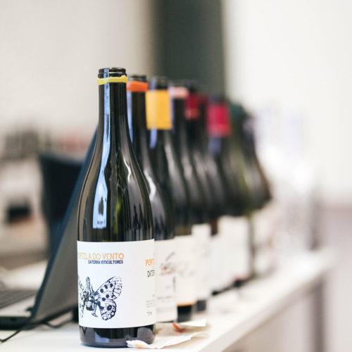 exp-vinos-catados-2
